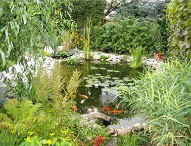 Záhrada-inšpirácie - Obrázok č. 33
