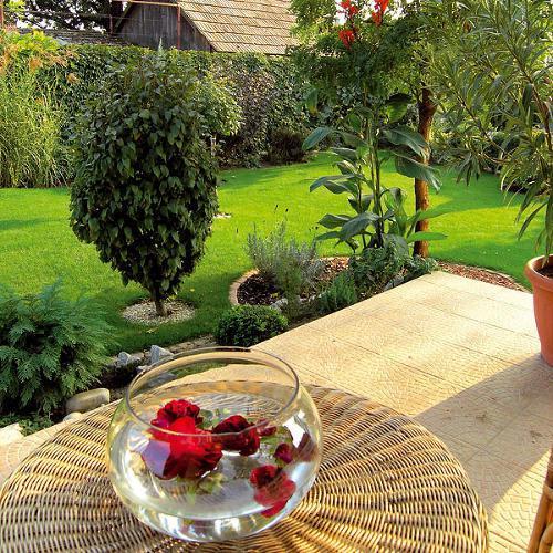 Záhrada-inšpirácie - Obrázok č. 69