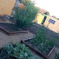 pohľad na záhradný domček a už aj nový plot :)
