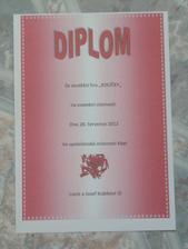 Diplom č. 2