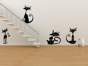 Moderní kočky