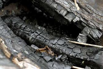 POPEL - smíchaný s vodou čistí dvířka krbu, ze dřeva je zdroj živin (pro rostliny), odstraní kruhy po skleničkách na dřevěném nábytku (z cigaret)