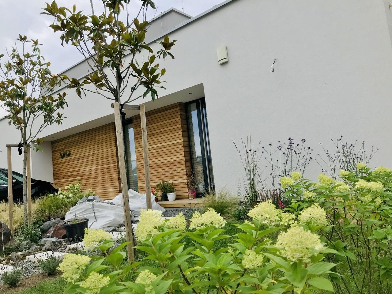 Naše L-ko - začiatok 4. roku bývania - novo zasadené biele hortenzie v predzahrádke