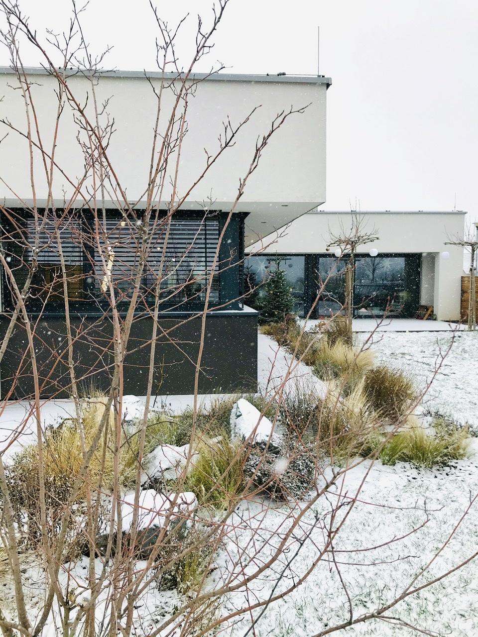 Naše L-ko - 2021 - stále dokončujeme - záhrada  február