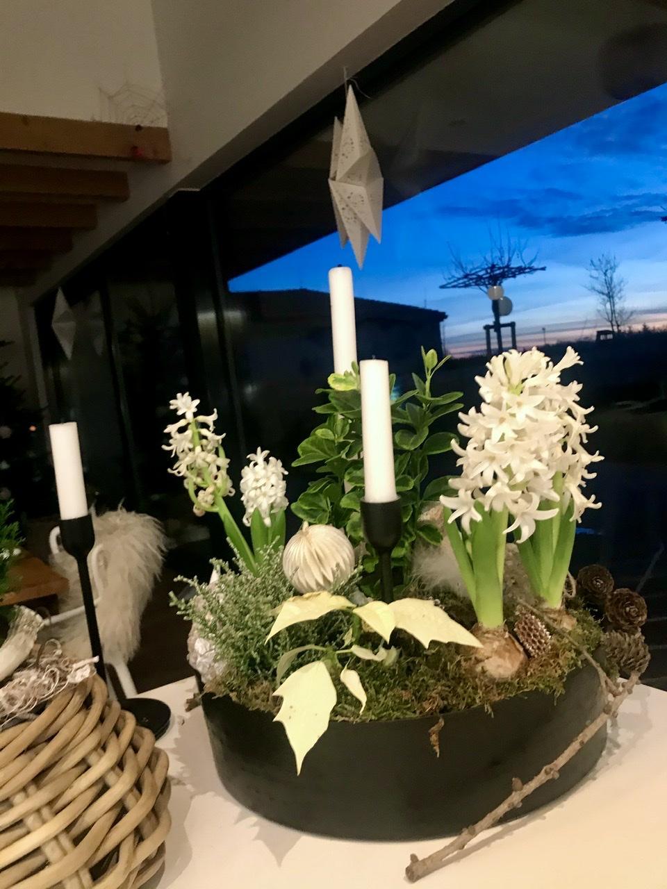 Naše L-ko - 2021 - stále dokončujeme - Rozkvitnuté biele hyacinty