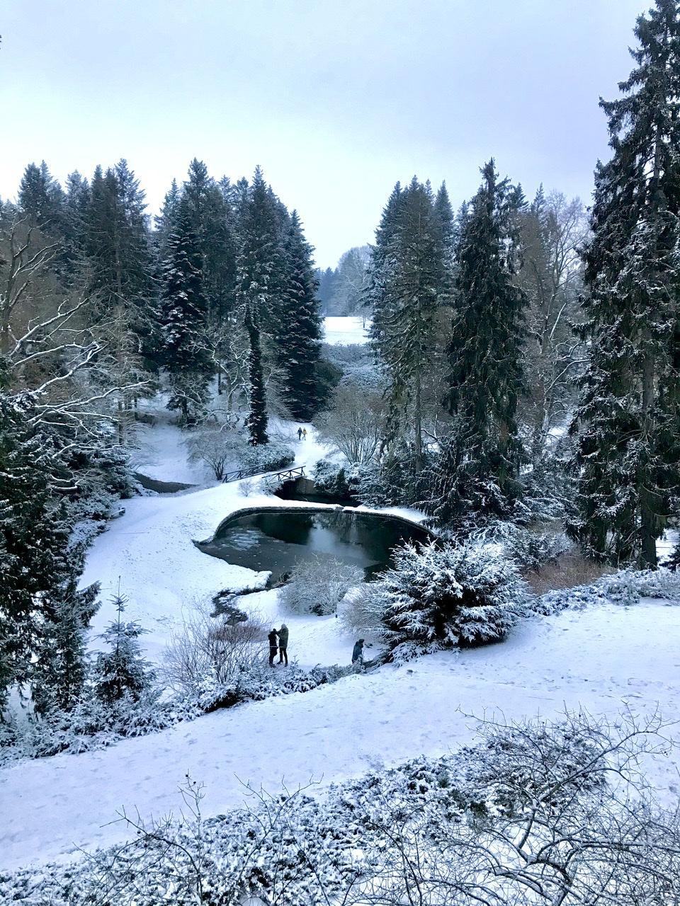 Naše L-ko - 2021 - stále dokončujeme - 10 minut pešo od domčeka - Vonku mrazivých -6 stupňov a 11 km vychádzka v parkovej zóne upraveného lesoparku - pamiatka Unesco