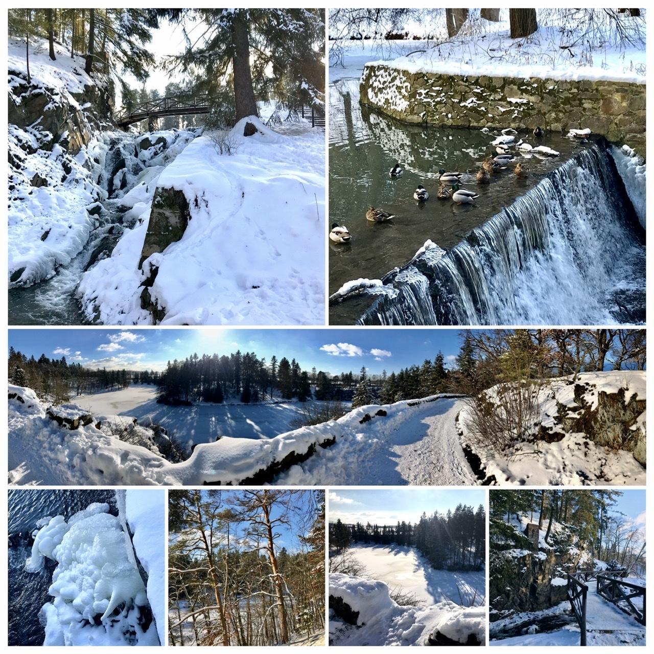 Naše L-ko - 2021 - stále dokončujeme - naše denné vychádzky - 10 minut pešo od domčeka, zima čaruje - posledné zamraznuté dni