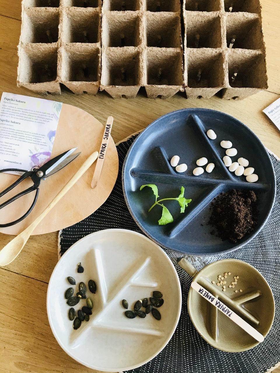 Naše L-ko - 2021 - stále dokončujeme - Príprava domácich plantičiek a moje obľúbené kameninové misky. Pred týždnom boli zasadené sladké papriky, šaláty, na radu prídu rajčiny, uhorky. Tento rok ma láka urobiť hriadku rezaných kvetov do vázy.