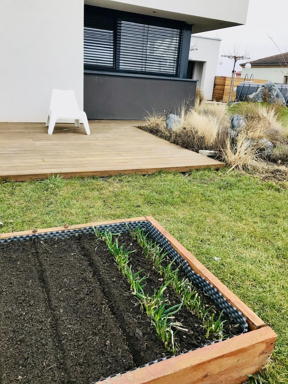 Naše L-ko - 2021 - stále dokončujeme - Mini hriadky u spálňovej terasy tento rok využijem na bylinky do varenia - zasadila som 2 druhy petržlenovych okrasnych vňatí. Očistila 2 ročnú cibulku. Pásik redkoviek a ked bude teplešie miesto redkoviek sem pride bazalka