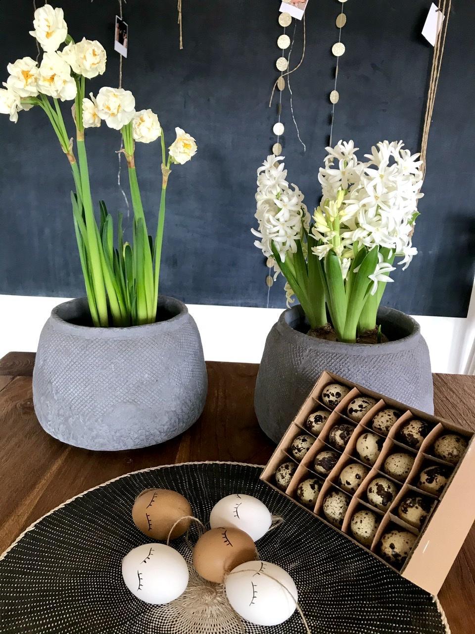 Naše L-ko - 2021 - stále dokončujeme - Biele narcisy a hyacinty v betonových kvetináčoch. Tento rok som prikúpila na dekorovanie 60 prepeličích vajíčok. Prajem krásnú nedeľu