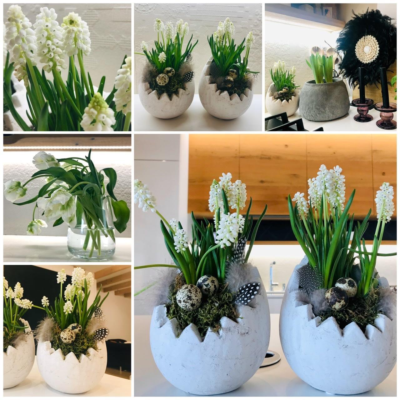 Naše L-ko - 2021 - stále dokončujeme - Obľúbené biele modrice a biele tulipány