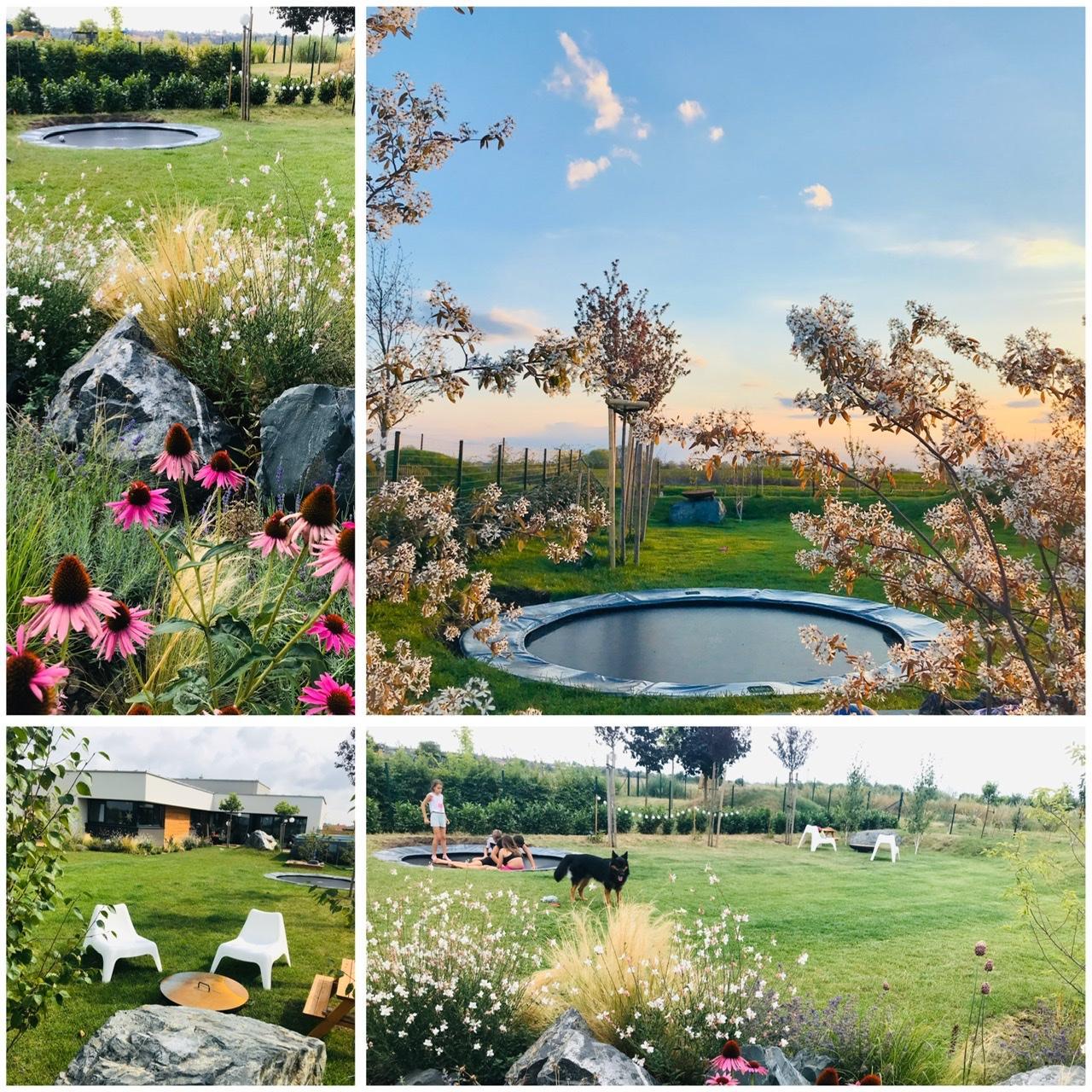 Naše L-ko - 2021 - stále dokončujeme - Zapustená trampolína 2. sezóna - najoblubenejší detský herný prvok u nás. Včerajšie foto s 2 muchovníkmi podvečer (v pravo), máj 2021 . Malé fotky - spomienka na minulé leto 2020. Tento rok pribudnu v okolí okrasné trávy.
