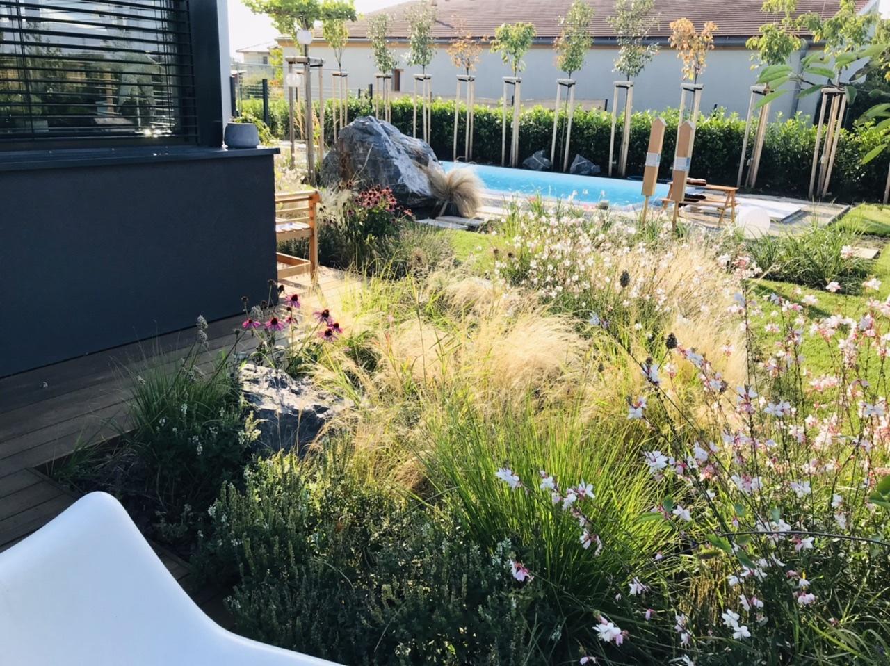 Naše L-ko - 2021 - stále dokončujeme - Skoré ráno a trvalky lemujúce drevný chodníček od zadnej terasy ku bazénu