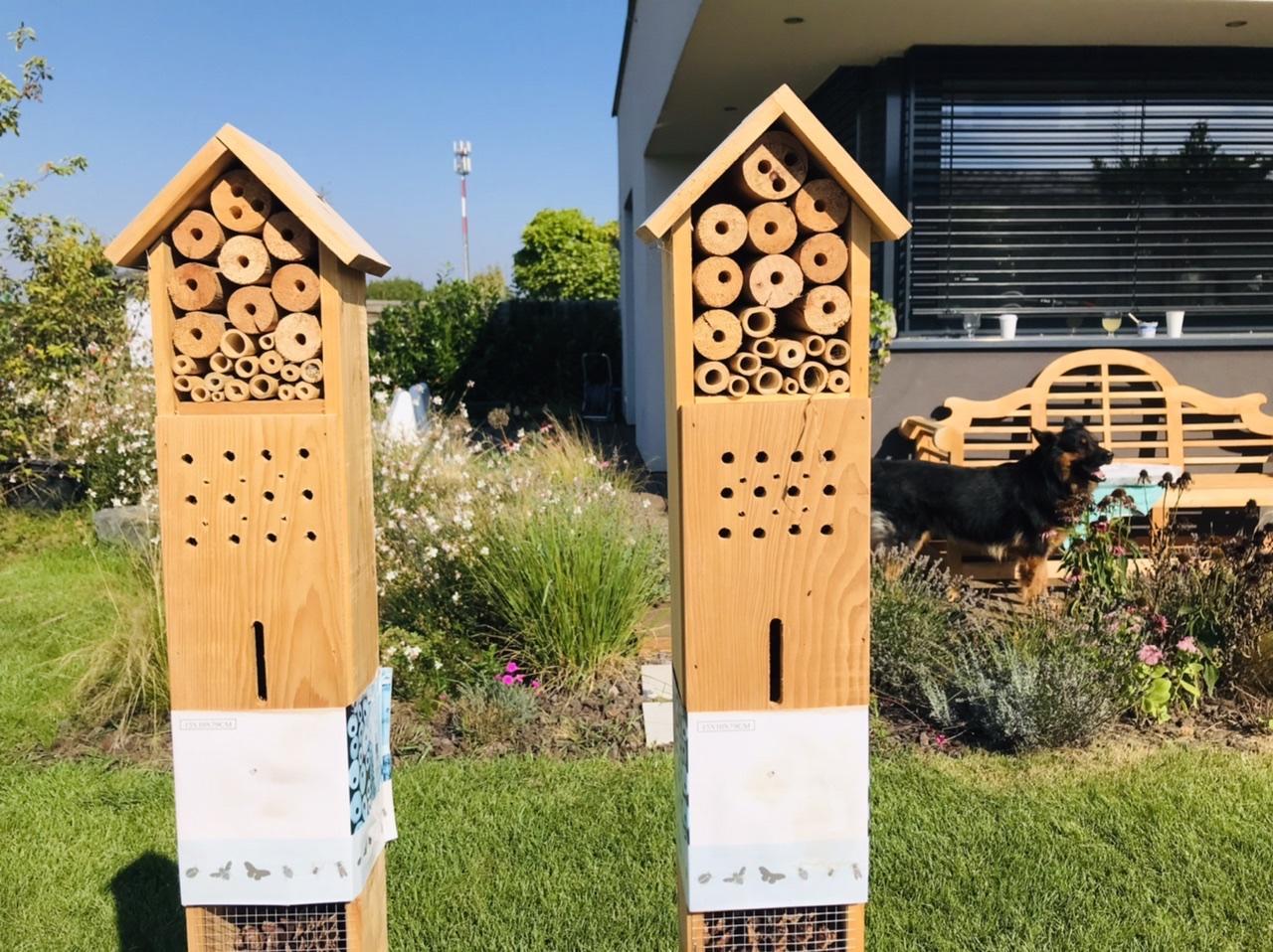 Naše L-ko - 2021 - stále dokončujeme - Hmyzie domčeky - začínajú sa obsadzovať prvými obyvateľmi. S 10 cm stebielkom trávy sem letel nájomník, a stebielko trávy si namotal do babusového otvoru.