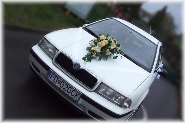 Katarína Fidesová{{_AND_}}Jaroslav Betkov - naše auto