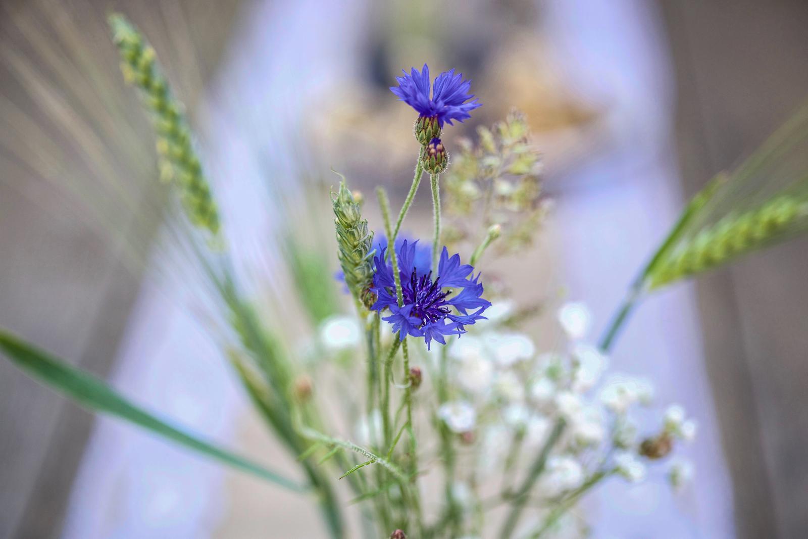 Kristýna Křížová{{_AND_}}Radovan Sobotka - Tahle kombinace květin je prostě nádherná :-)
