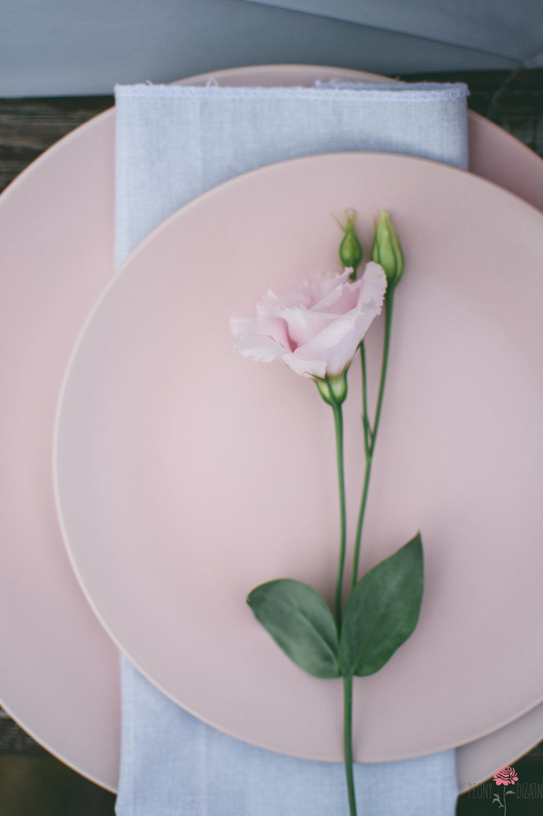 Ružová kráska... - Obrázok č. 4