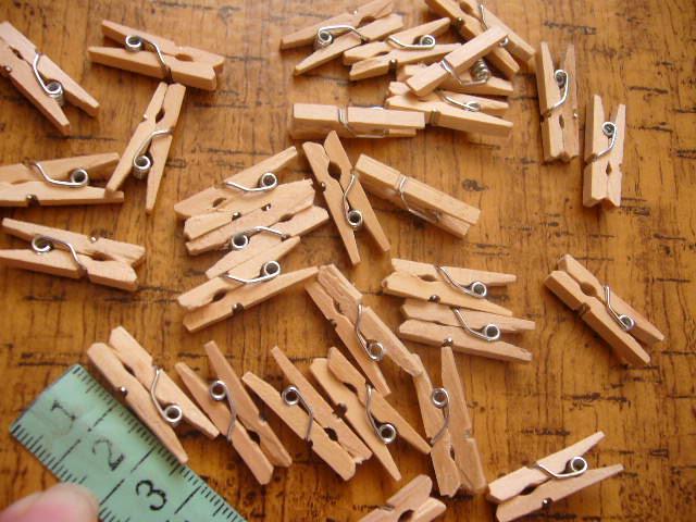 dreveny štipec - Obrázok č. 1