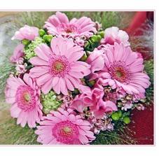 kytky z gerber