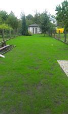 trochu se nam konecne zazelenala zahrada