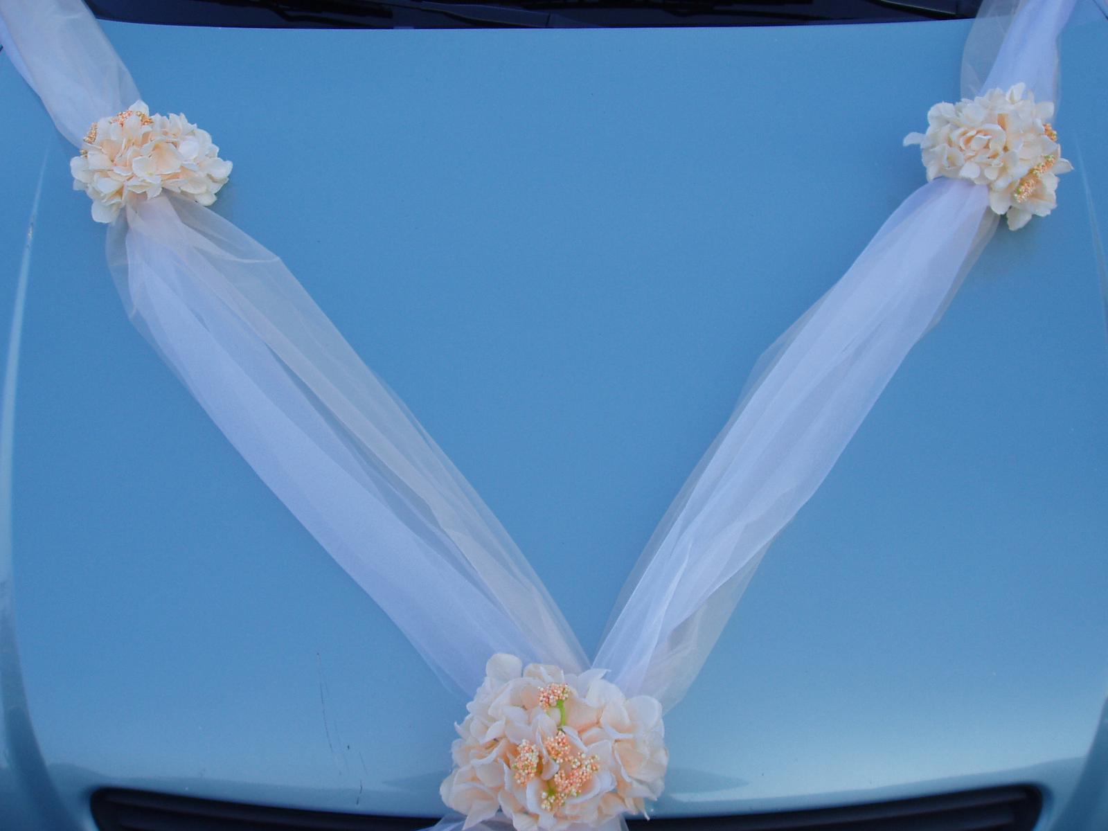 Svatební dekorace - dvojšerpa lososovo-bílá