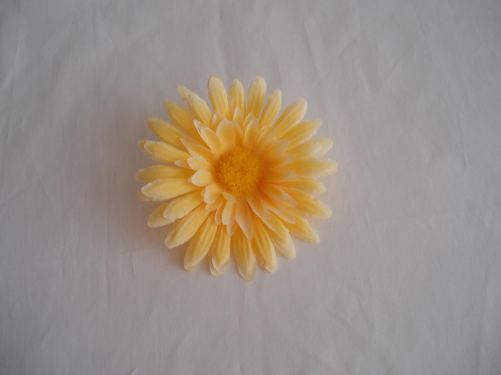 květ gerbery - Obrázek č. 1