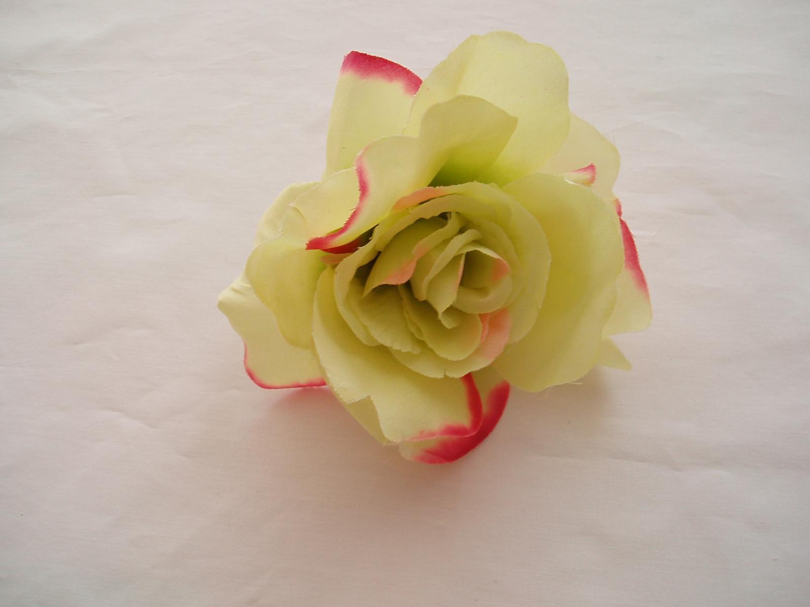 růže-zelená - Obrázek č. 1