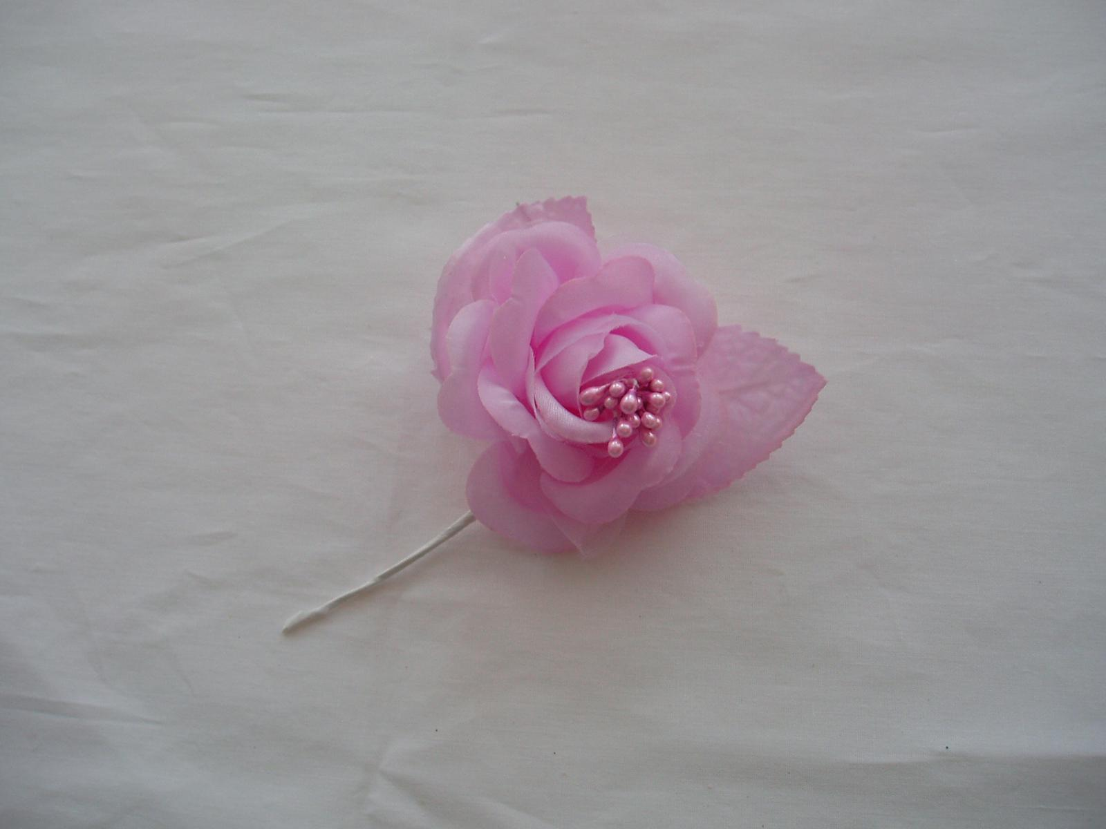růže-světle fialová - Obrázek č. 1