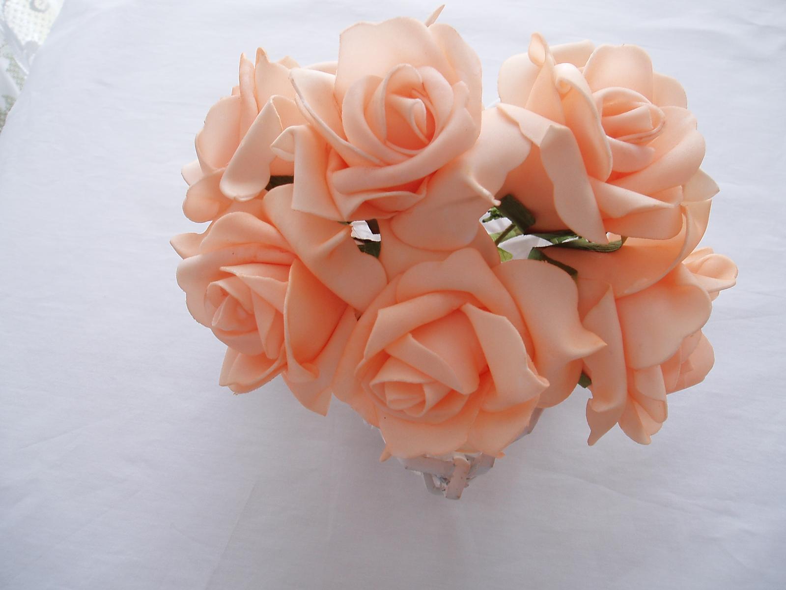 pěnová růže-meruňková - Obrázek č. 1