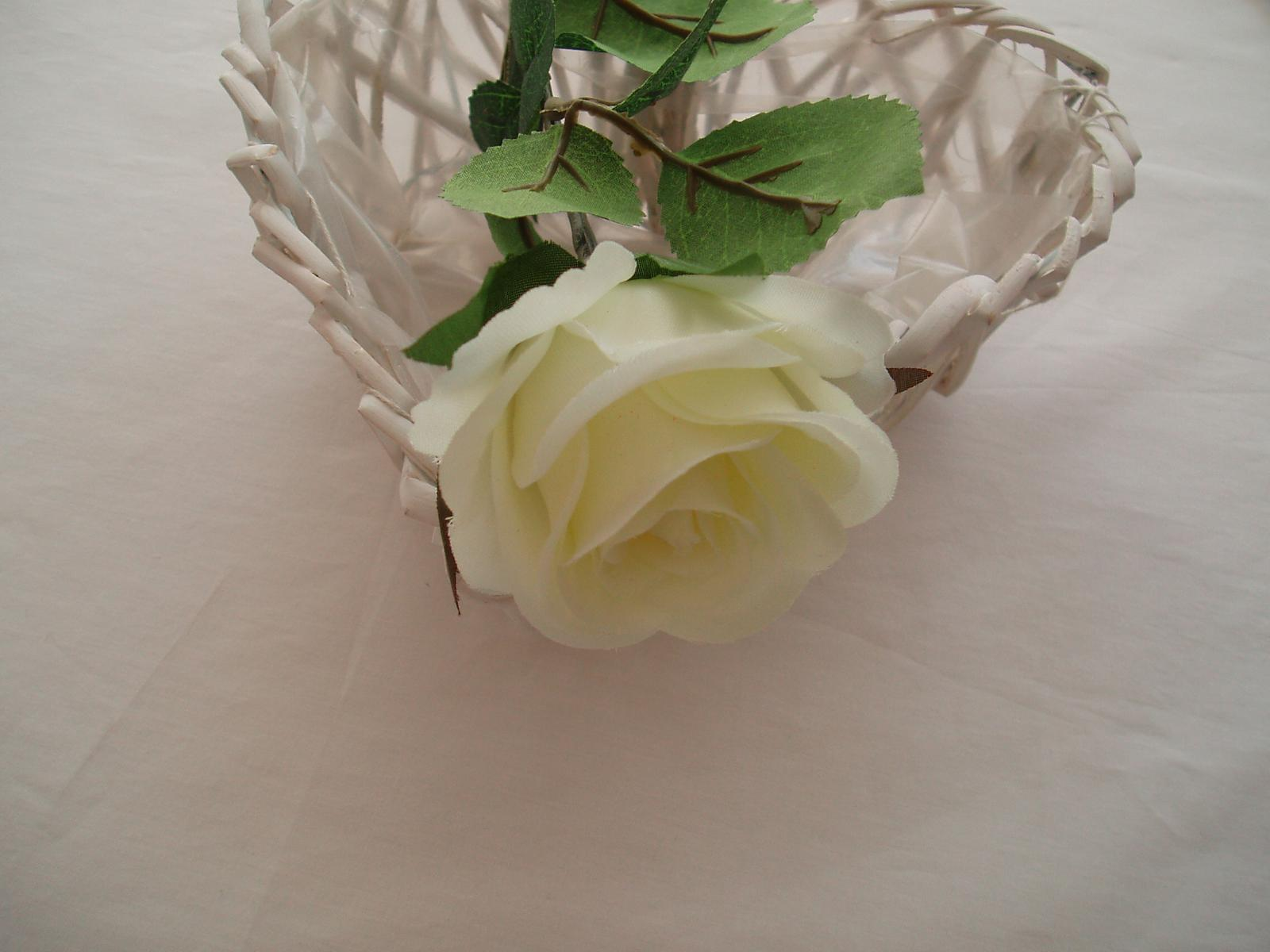 růže na stonku-smetanová - Obrázek č. 1