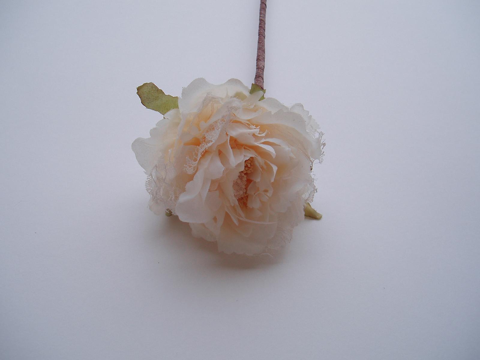 květ růže-smetanový - Obrázek č. 1