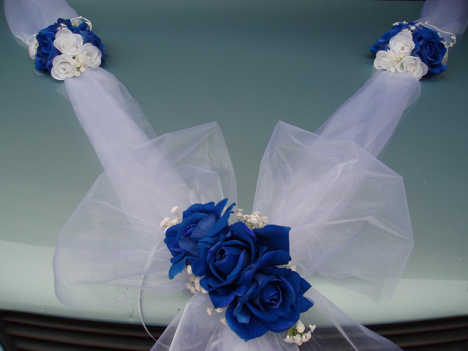 Dvojšerpa s mašlí-modré růže - Obrázek č. 1