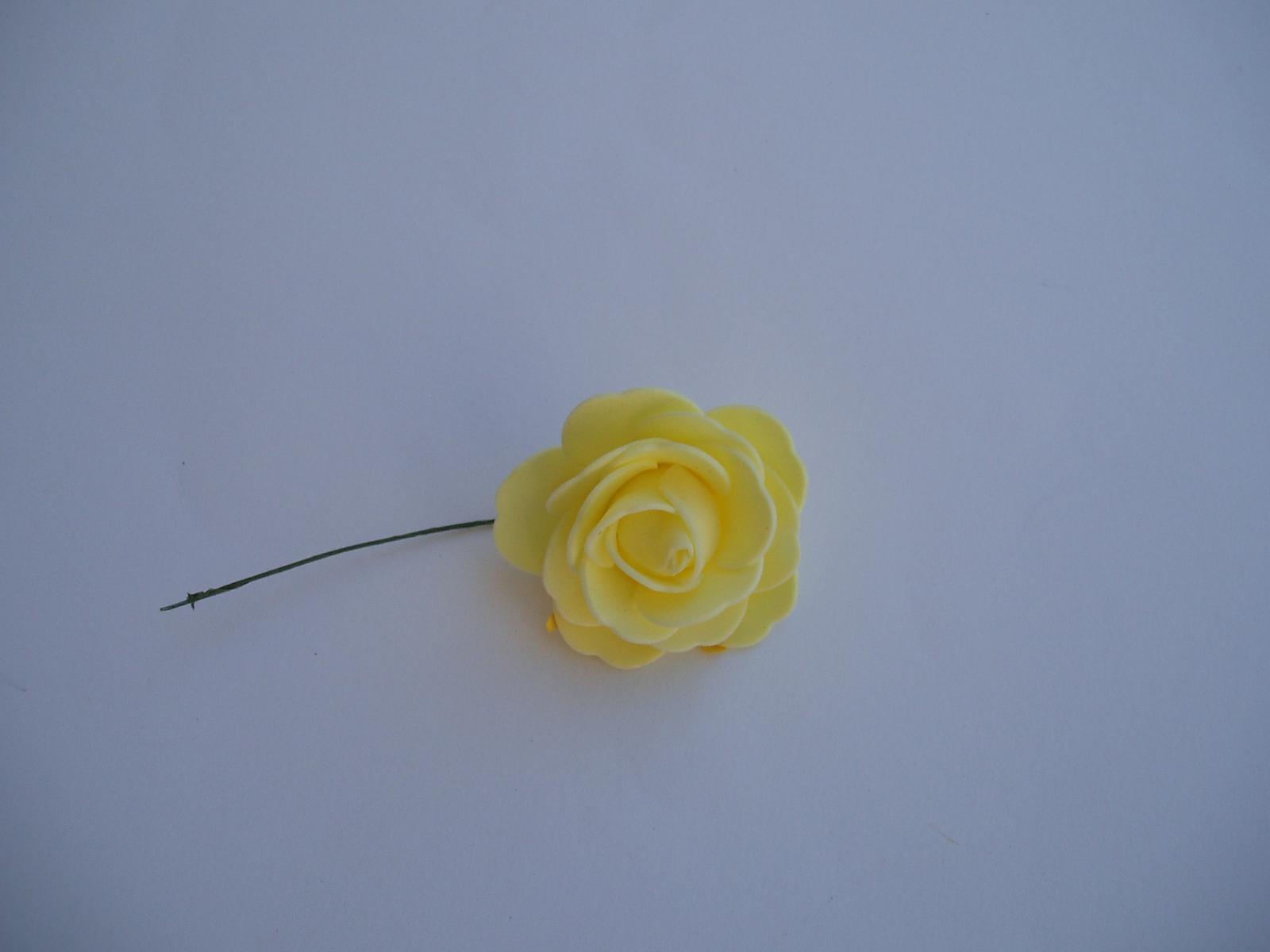 pěnová růže-světle žlutá  - Obrázek č. 1
