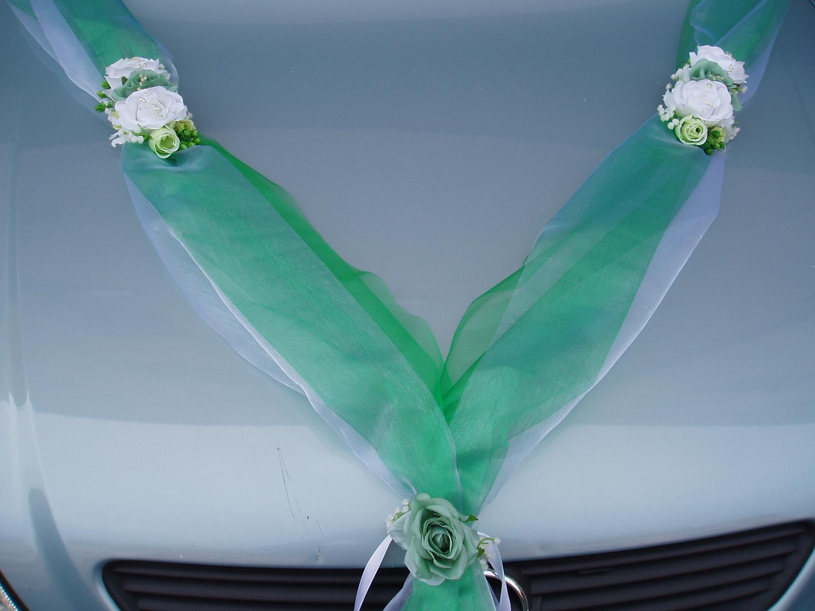 dvojšerpa zelená - Obrázek č. 1