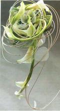 zajímavá kytička