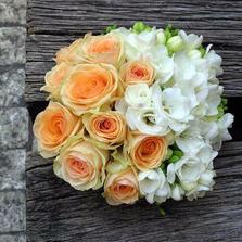 nádherná kytí