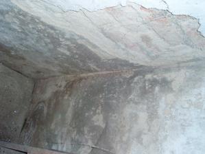 humus na zdi
