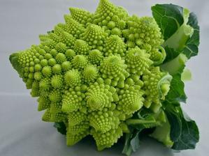 krásný druh brokolice - škoda jíst :-)