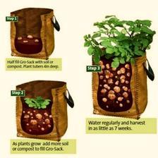 jak jinak se dají pěstovat brambory...