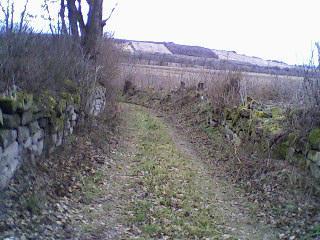 Začínáme....:-) - cesta k pozemku...