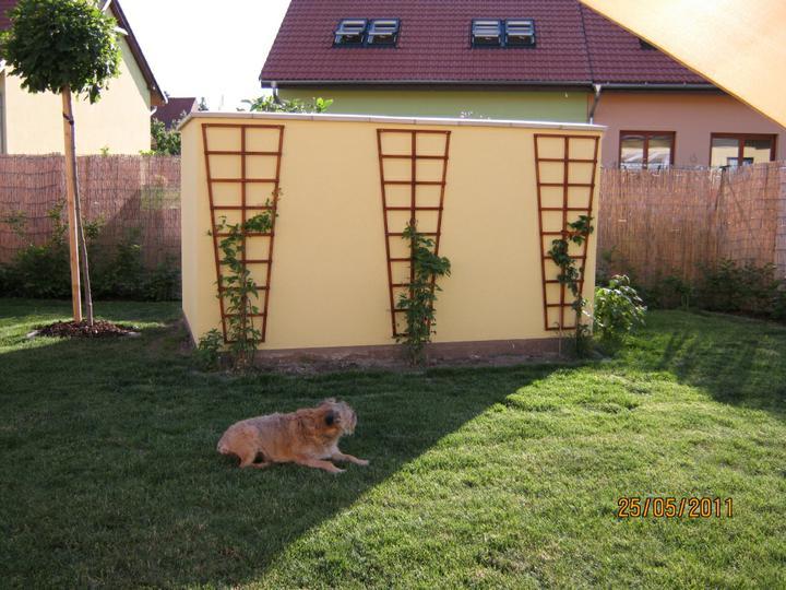 ...  a zabydlujeme se...:-) - za zdí je moje mini  bylinková zahrádka + rajčata a tepelné čerpadlo