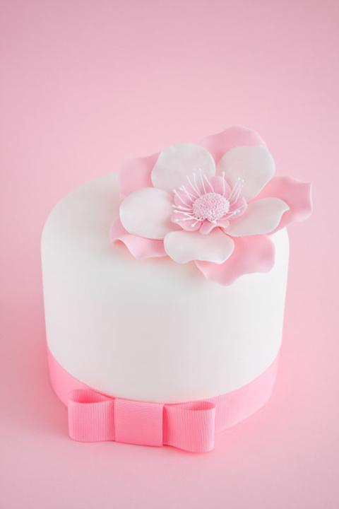 Úžasné minicakes - Obrázok č. 13