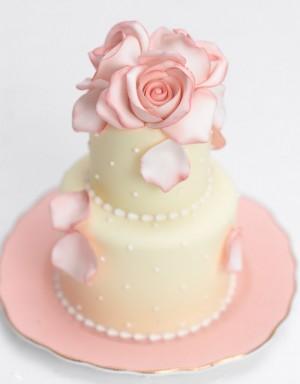 Úžasné minicakes - Obrázok č. 94