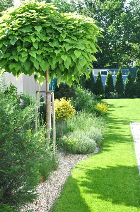 Velcí zahradníci s malou zahradou - Obrázek č. 202