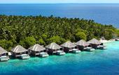 Maledivy - Dusit Thani (květen až září),