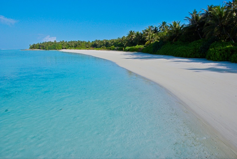 Maledivy - Sun Island (All Inklusive) - Obrázek č. 2