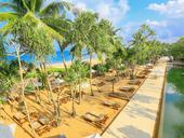 Srí Lanka- Pandanus Beach (západní pobřeží),