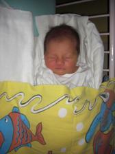 Dne 20.12.2010 se nám narodila holčička Eliška Anna