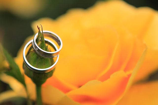 ...detaily svadby snov... - Obrázok č. 6