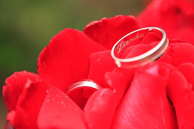 ...detaily svadby snov... - Obrázok č. 15